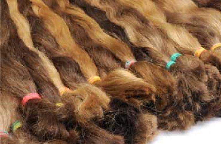 Popravila in stiliranje lasulj